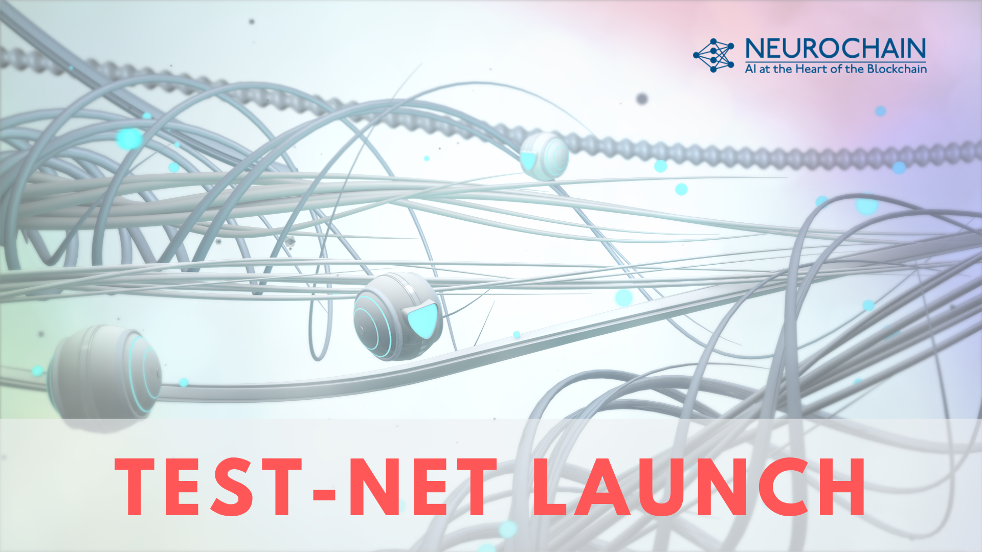 Test-Net Launch